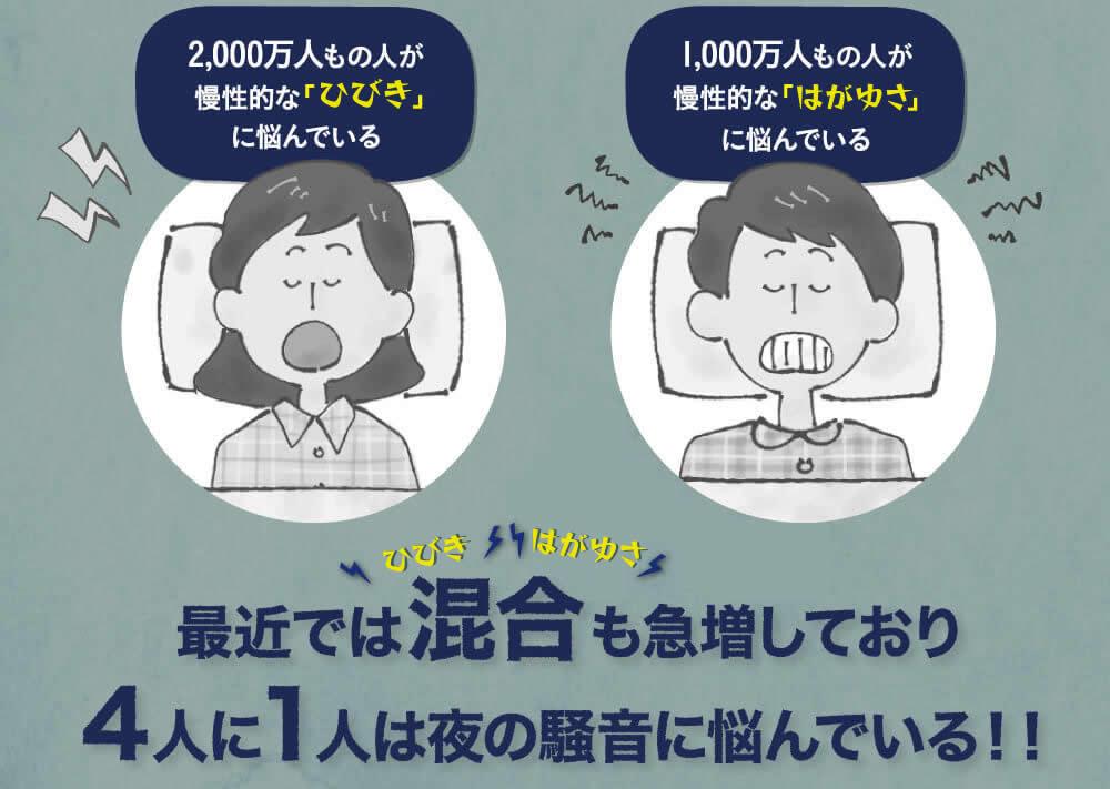 いびき人口は2000万人。歯ぎしり人口は1000万人。混合型も増えてきている。