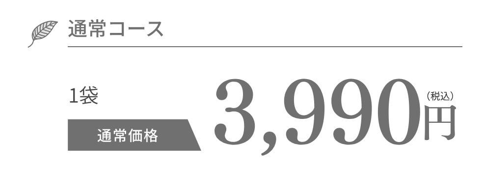 通常コース 3,990円